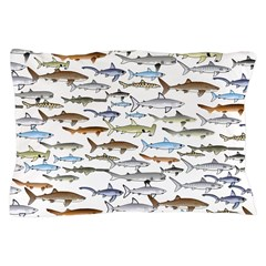School of Sharks 2 Pillow Case