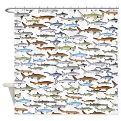 School of Sharks 2 Shower Curtain