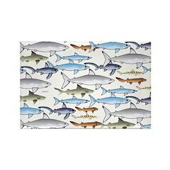 School of Sharks 2 Rectangle Magnet (100 pack)