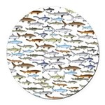 School of Sharks 2 Round Car Magnet