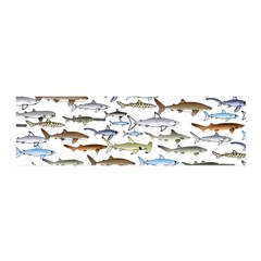 School Of Sharks 2 Wall Decal
