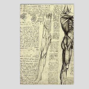 Male Anatomy by Leonardo Postcards (Package of 8)