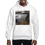 Seal Rock Coastal Scene Hoodie