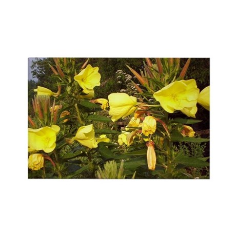 Summer Time Flowers Rectangle Magnet