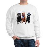 Sierra, Charlee and Brodie Sweatshirt