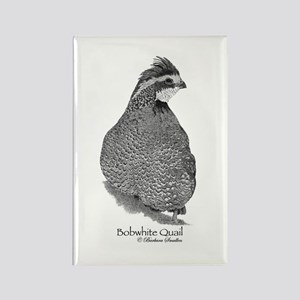 Bobwhite Quail Rectangle Magnet
