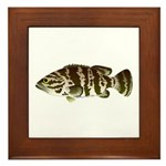 Goliath Grouper Framed Tile