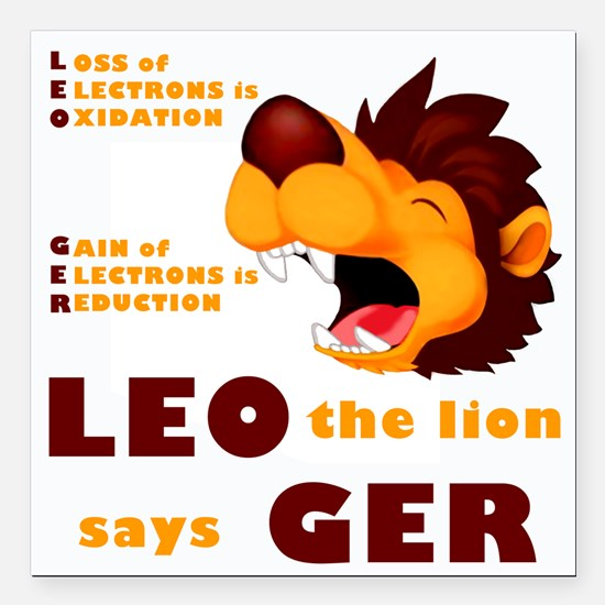 "LEO Says GER Square Car Magnet 3"" x 3"""