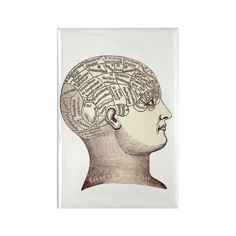 Victorian Phrenology Rectangle Magnet (100 pack)