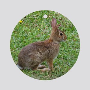 Alerted Rabbit Ornament (Round)