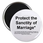 Protect the Sanctity of Marriage* Magnet