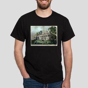 The home of Washington, Mount Vernon, VA - 1872 T-