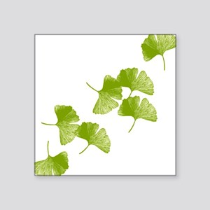 "ginkgo_tr Square Sticker 3"" x 3"""