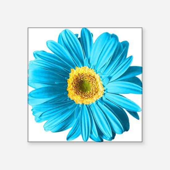 "pop-daisy_bu.png Square Sticker 3"" x 3"""