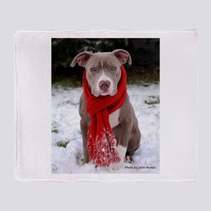 Winter Pit Bull Throw Blanket