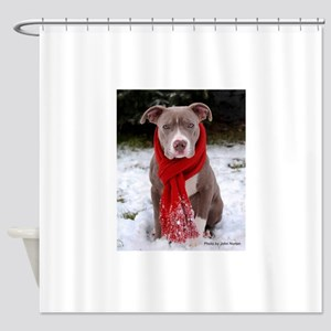 Winter Pit Bull Shower Curtain