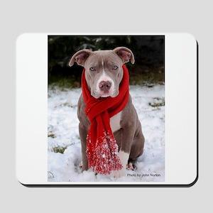 Winter Pit Bull Mousepad