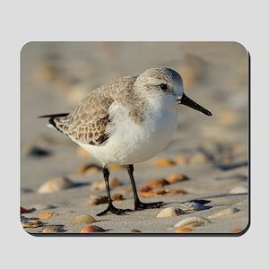 Sand Piper and Seashells Mousepad