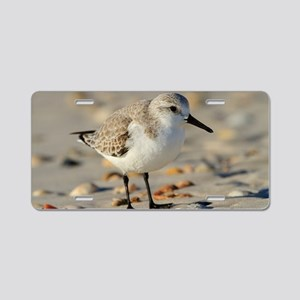 Sand Piper and Seashells Aluminum License Plate