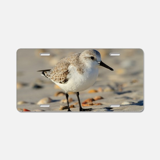 Sand Piper and Seashells Aluminum License Plate