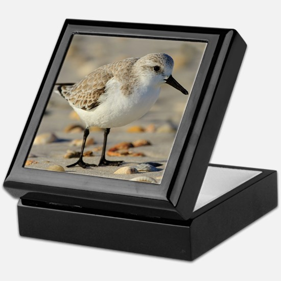 Sand Piper and Seashells Keepsake Box