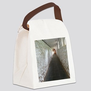 Monticello Thomas Jefferson Hallw Canvas Lunch Bag