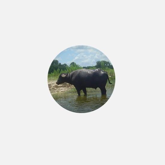 water buffalo Mini Button