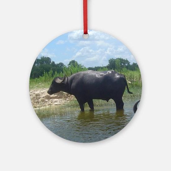 water buffalo Ornament (Round)