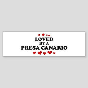 Loved: Presa Canario Bumper Sticker
