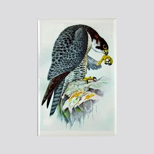 Falcon Rectangle Magnet