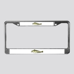 Wels catfish License Plate Frame