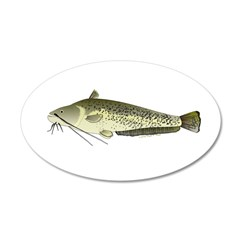 Wels catfish Wall Decal