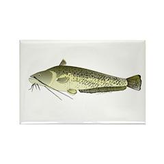 Wels catfish Rectangle Magnet