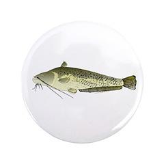Wels catfish 3.5