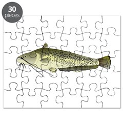 Wels catfish Puzzle