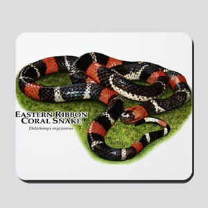 Eastern Ribbon Coral Snake Mousepad