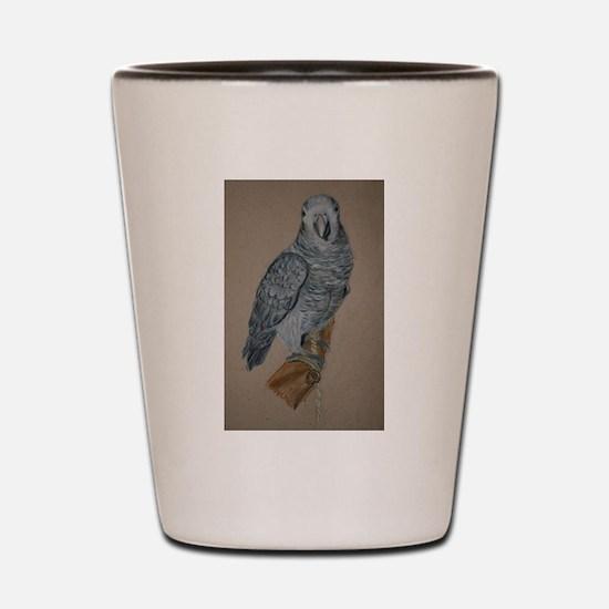 African Timneh Grey Shot Glass