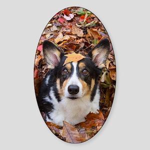Corgi and Fall Leaves Sticker (Oval)