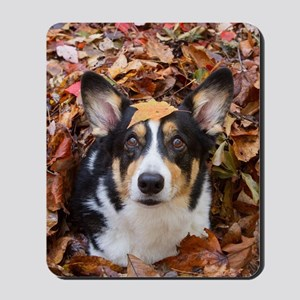Corgi and Fall Leaves Mousepad