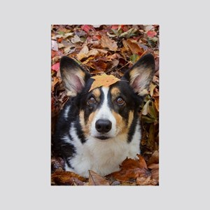 Corgi and Fall Leaves Rectangle Magnet
