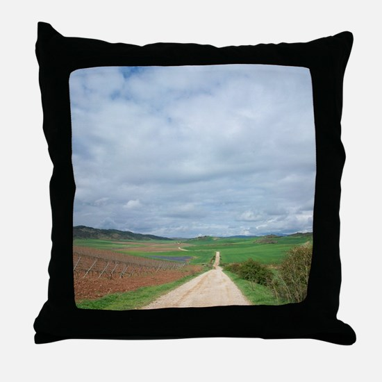Unique Camino de santiago Throw Pillow