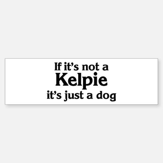 Kelpie: If it's not Bumper Bumper Bumper Sticker
