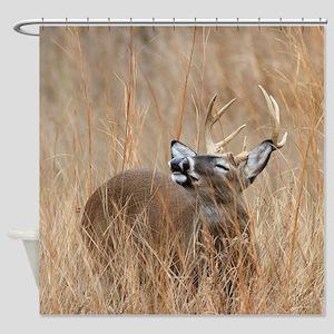 Buck in the Grass Shower Curtain