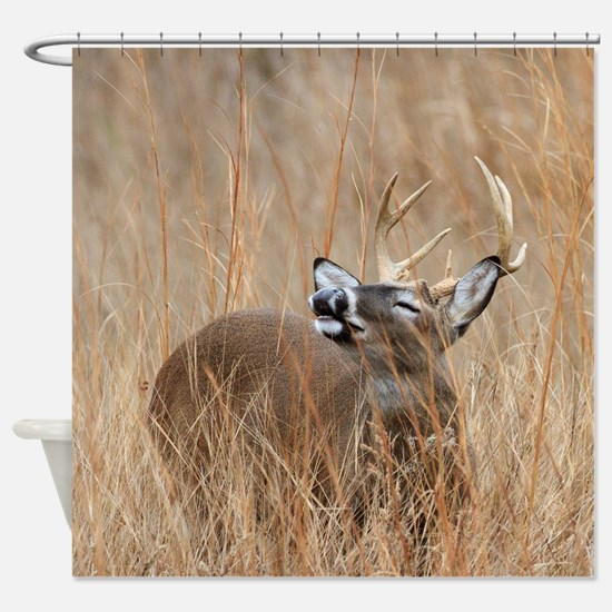Buck in the Grass Shower Curtain