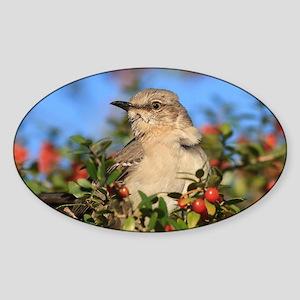 Mockingbird & Yaupon Berries Sticker (Oval)