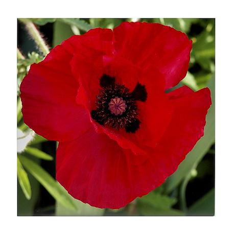 Tile Coaster - Red Poppy # 38