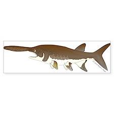 Paddlefish Bumper Sticker