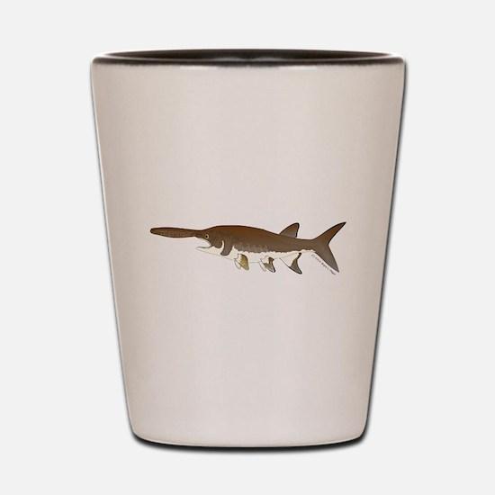 Paddlefish c Shot Glass