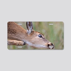 Itchy Fawn Aluminum License Plate
