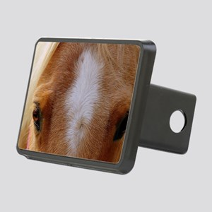 The Eyes Say It All Rectangular Hitch Cover